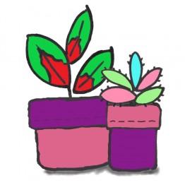 Plant Pot Holder Kit - Pink/Purple