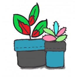 Plant Pot Holder Kit - Teal/Grey